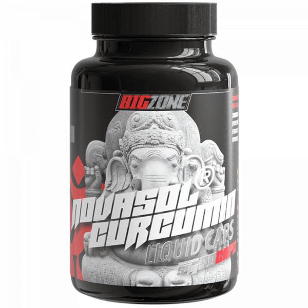 NovaSol® Curcumin (90 Liquid Kapseln), BigZone